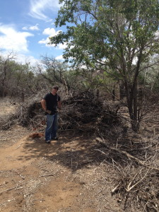 Meanwhile back at the ranch...Brian W. about to begin mulch-fest on a massive pile of debris