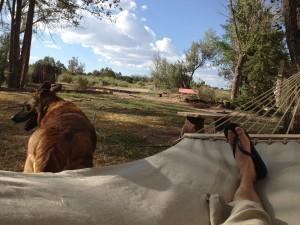 ...and I smoke it - I mean lay on it. Organic hemp hammock - thanks Pam and Ben!